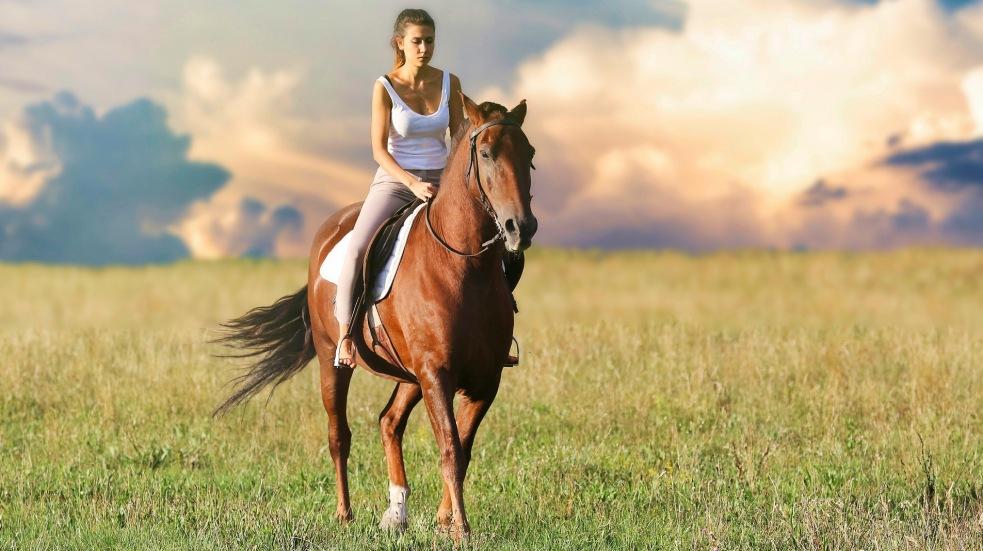 Projížďky na koni v USA