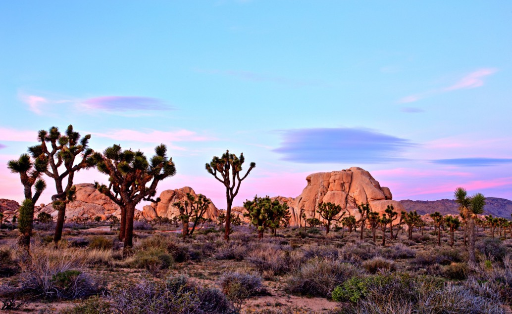 Národní parky a města západní části USA